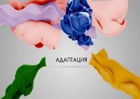 """Информационный проект """"Адаптация"""""""